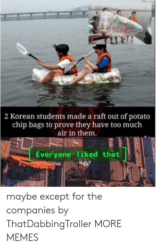 Dank, Memes, and Target: 2 Korean students made a raft out of potato  chip bags to prove they have too much  air in them.  Everyone liked that maybe except for the companies by ThatDabbingTroller MORE MEMES