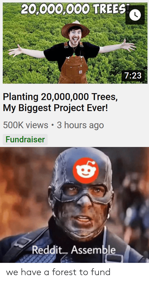 views: 20,000,000 TREES  7:23  Planting 20,000,000 Trees,  My Biggest Project Ever!  500K views 3 hours ago  Fundraiser  Reddit... Assemble  uME4SSS we have a forest to fund
