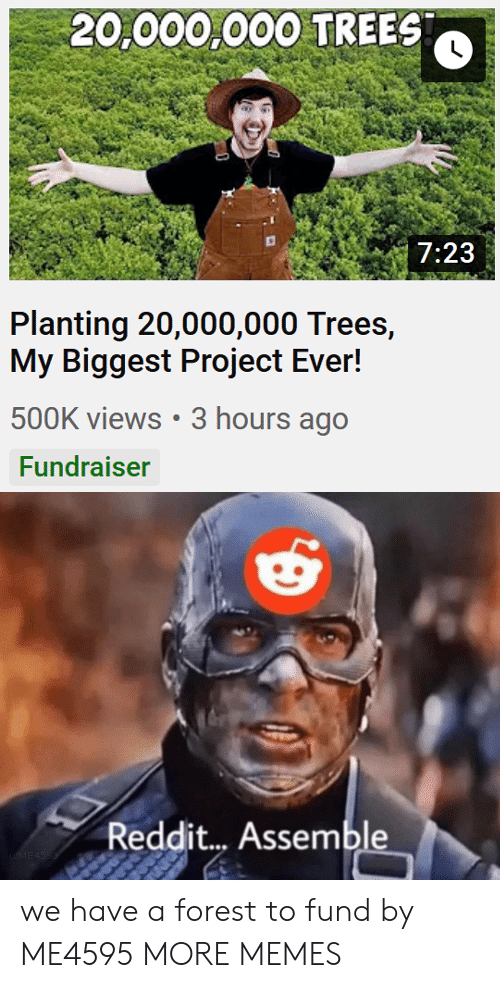 views: 20,000,000 TREES  7:23  Planting 20,000,000 Trees,  My Biggest Project Ever!  500K views 3 hours ago  Fundraiser  Reddit... Assemble  uME4SSS we have a forest to fund by ME4595 MORE MEMES