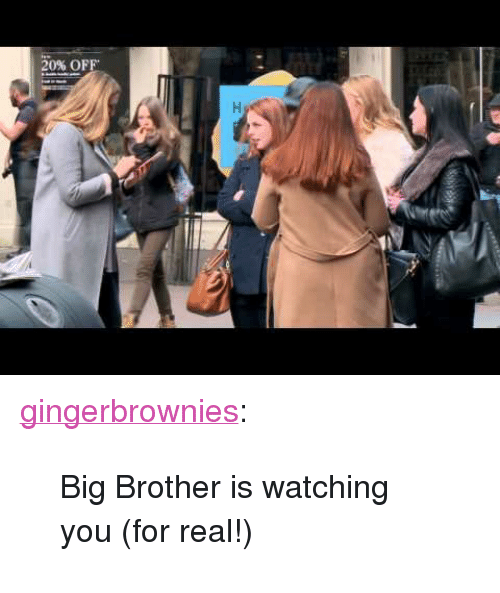 25 Best Memes About Big Brother Is Watching Big Brother Is