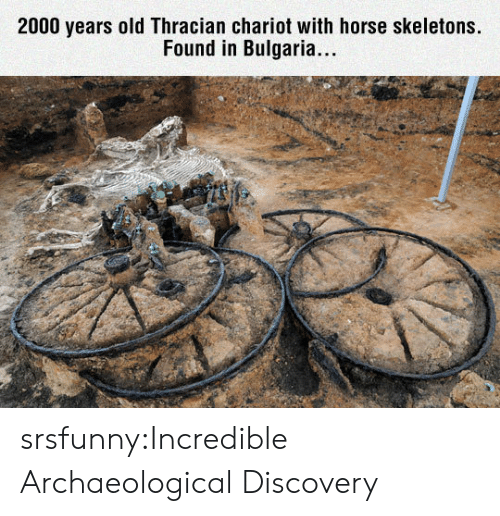 Tumblr, Blog, and Horse: 2000 years old Thracian chariot with horse skeletons.  Found in Bulgaria.. srsfunny:Incredible Archaeological Discovery