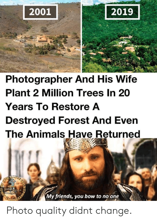 Animals, Friends, and Trees: 2001  2019  Photographer And His Wife  Plant 2 Million Trees In 20  Years To Restore A  Destroyed Forest And Even  The Animals Have Returned  RIXS  LORdNGS  Shzeporiang  My friends, you bow to no one  IR  203 Photo quality didnt change.