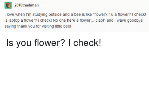 """Thank You, Flower, and Laptop: 2016trashman  tudying outside and a bee is like tower? ru a flower?  Ilove when I'm  outs  e """"flower? r u a flower? I check!  is laptop a flower? i checkl No one here a flower... ciaol  saying thank you for visiting little bee  and I wave goodbye Is you flower? I check!"""