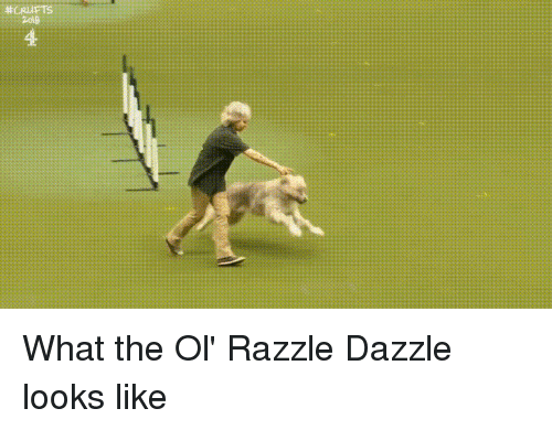 Dazzle, What, and The Ol Razzle Dazzle: 2018  4 What the Ol' Razzle Dazzle looks like