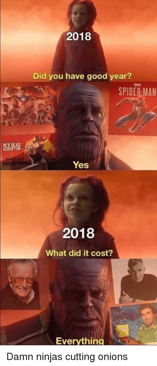 Good, Spiderman, and Yes: 2018  Did you have good year?  SPIDERMAN  Yes  2018  What did it cost?  Everything Damn ninjas cutting onions
