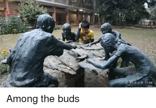 Buds and The: 2019/2/8 17:46