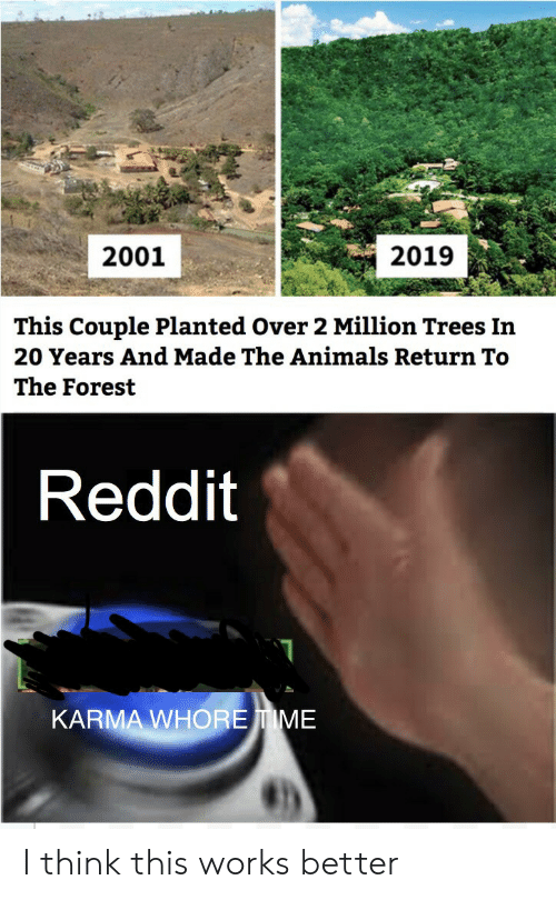 20 Years: 2019  2001  This Couple Planted Over 2 Million Trees In  20 Years And Made The Animals Return To  The Forest  Reddit  KARMA WHOREIME I think this works better