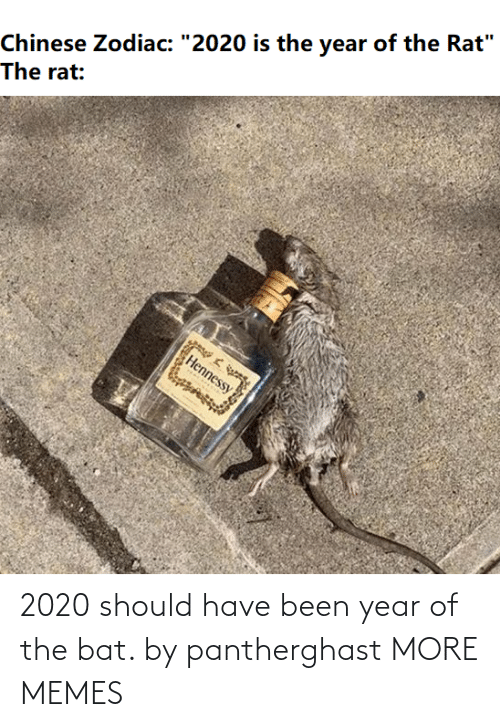 bat: 2020 should have been year of the bat. by pantherghast MORE MEMES