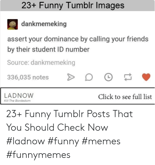 Click, Friends, and Funny: 23+ Funny Tumblr Images  dankmemeking  assert your dominance by calling your friends  by their student ID number  Source: dankmemeking  336,035 notes O >  LADNOW  Click to see full list  Kill The Bordedom 23+ Funny Tumblr Posts That You Should Check Now #ladnow #funny #memes #funnymemes