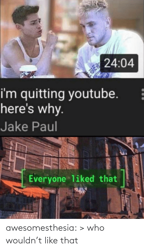 Gt: 24:04  i'm quitting youtube.  here's why.  Jake Paul  Everyone liked that awesomesthesia:  > who wouldn't like that