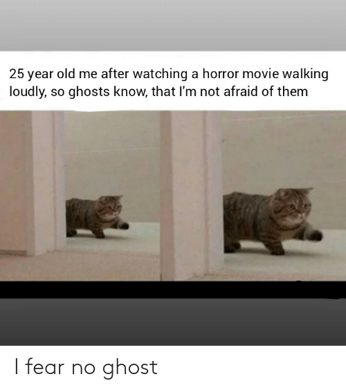Fear: 25 year old me after watching a horror movie walking  loudly, so ghosts know, that I'm not afraid of them I fear no ghost