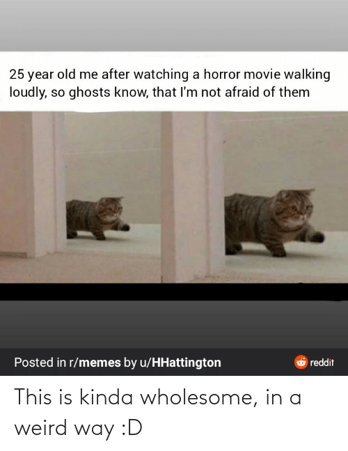 horror movie: 25 year old me after watching a horror movie walking  loudly, so ghosts know, that I'm not afraid of them  Posted in r/memes by u/HHattington  6 reddit This is kinda wholesome, in a weird way :D