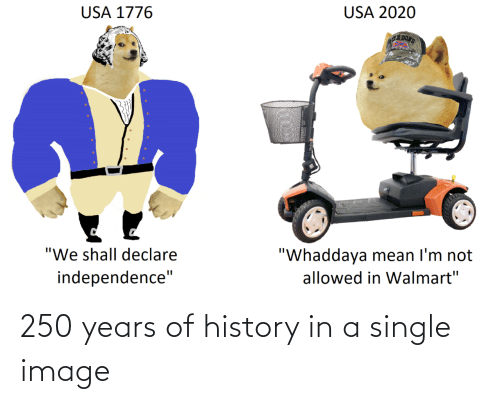A Single: 250 years of history in a single image