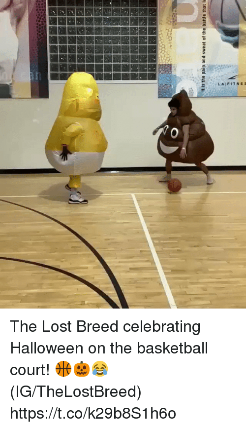 Basketball, Halloween, and Lost: 2LAIFITNES The Lost Breed celebrating Halloween on the basketball court! 🏀🎃😂 (IG/TheLostBreed) https://t.co/k29b8S1h6o