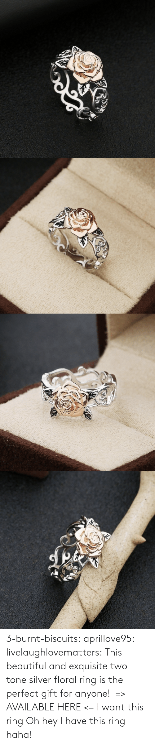 perfect: 3-burnt-biscuits: aprillove95:  livelaughlovematters:  This beautiful and exquisite two tone silver floral ring is the perfect gift for anyone!  => AVAILABLE HERE <=    I want this ring     Oh hey I have this ring haha!