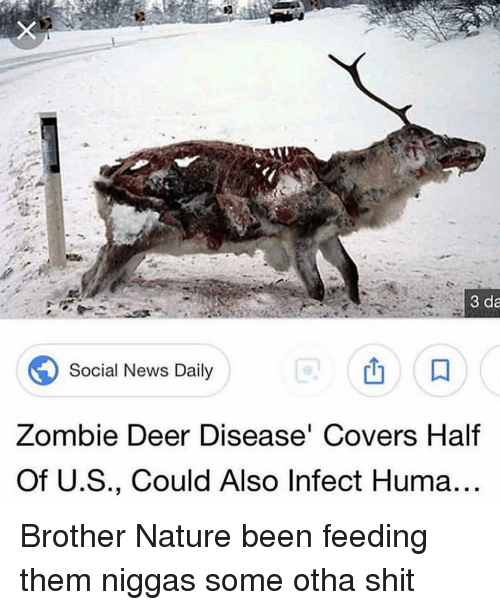 Deer, News, and Shit: 3 da  Social News Daily  Zombie Deer Disease Covers Half  Of U.S., Could Also Infect Huma Brother Nature been feeding them niggas some otha shit