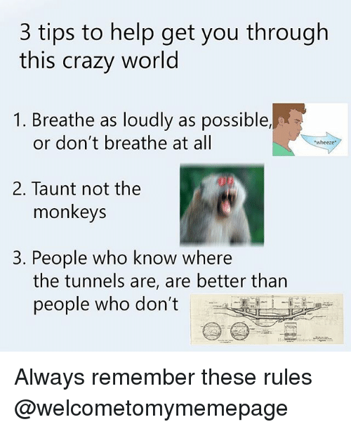 taunt: 3 tips to help get you through  this crazy world  1. Breathe as loudly as possible,  or don't breathe at all  wheeze  2. Taunt not the  monkeys  3. People who know where  the tunnels are, are better than  people who don't Always remember these rules @welcometomymemepage