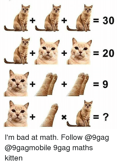 Bad At Math: =30  2 I'm bad at math. Follow @9gag @9gagmobile 9gag maths kitten