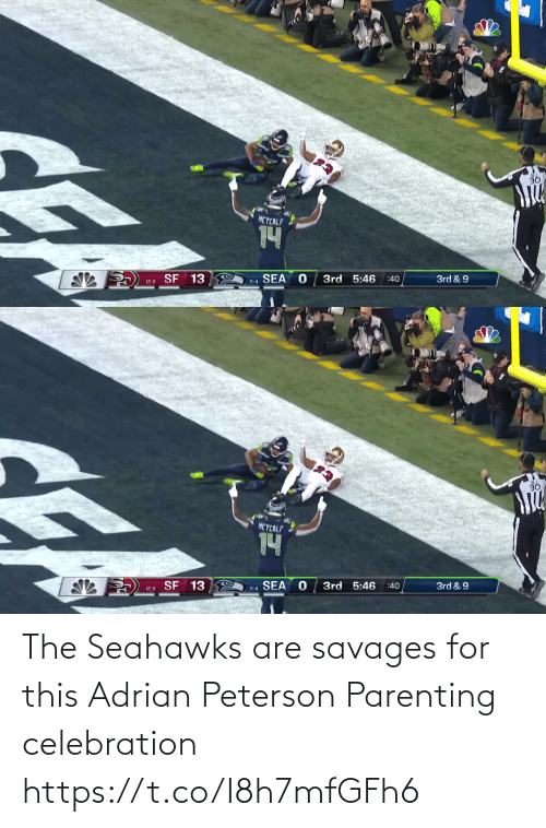 Metcalf: 30  METCALF  14  SF 13  SEA  3rd 5:46  3rd & 9  :40  12-3  11-4   30  METCALF  14  SF 13  SEA  3rd 5:46  3rd & 9  :40  12-3  11-4 The Seahawks are savages for this Adrian Peterson Parenting celebration https://t.co/I8h7mfGFh6