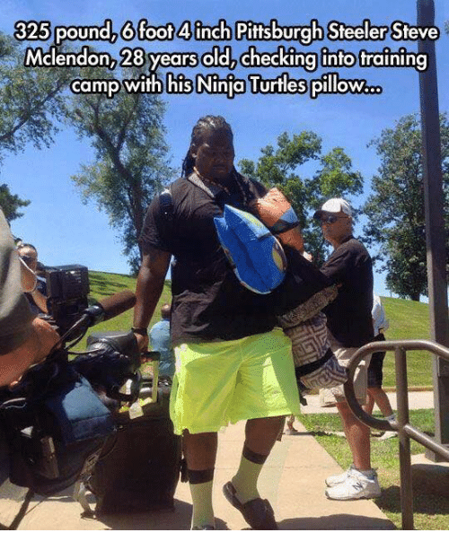 Pittsburgh Steeler: 325 pound, 6 foot 4 inch Pittsburgh Steeler Steve  Mclendon,28years old Checking into training  camp With his Ninia Turtles pillow...