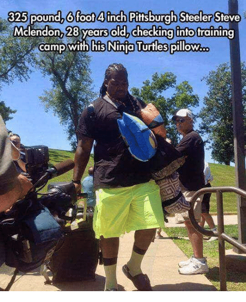 Pittsburgh Steeler: 325 pound, 6 foot 4 inch Pittsburgh Steeler Steve  Mclendon, 28 years oldachecking into fraining  camp with his Ninjo Turtles pillow