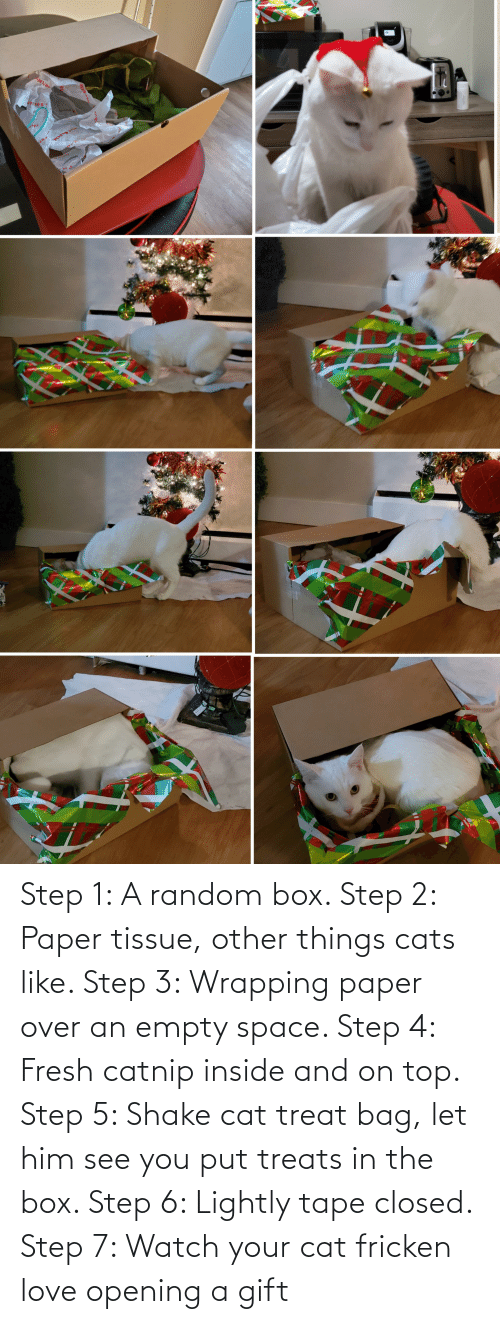 Step 3: 4.Sotye  MA Step 1: A random box. Step 2: Paper tissue, other things cats like. Step 3: Wrapping paper over an empty space. Step 4: Fresh catnip inside and on top. Step 5: Shake cat treat bag, let him see you put treats in the box. Step 6: Lightly tape closed. Step 7: Watch your cat fricken love opening a gift