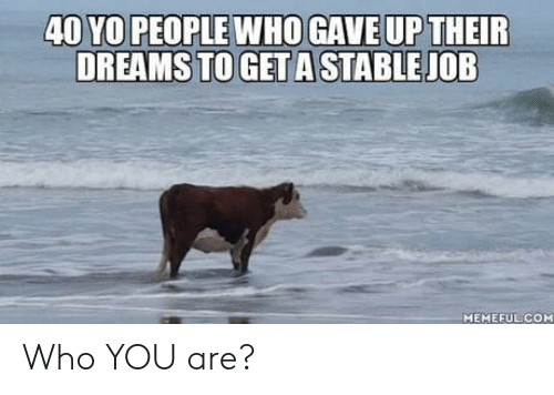 who you are: 40 YO PEOPLE WHOGAVE UP THEIR  DREAMS TO GET A STABLE JOB  MEMEFUL COM Who YOU are?