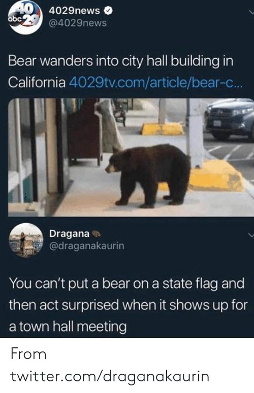 a town: 404029news  abc 29@4029news  Bear wanders into city hall building in  California 4029tv.com/article/bear-c...  Dragana  @draganakaurin  You can't put a bear on a state flag and  then act surprised when it shows up for  a town hall meeting From twitter.com/draganakaurin