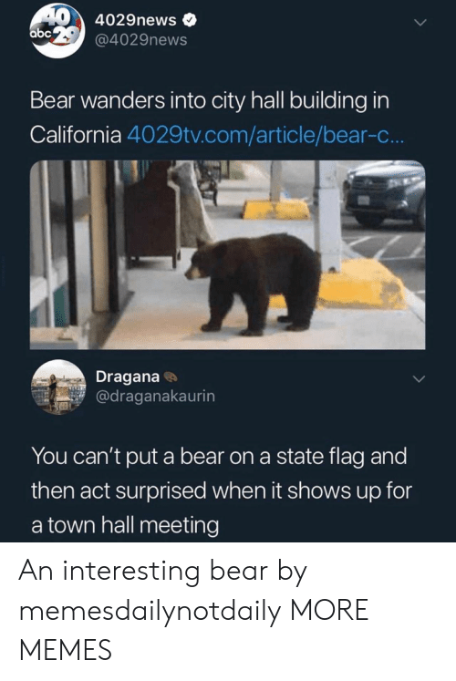 a town: 404029news  abc  @4029news  Bear wanders into city hall building in  California 4029tv.com/article/bear-c...  Dragana  @draganakaurin  You can't put a bear on a state flag and  then act surprised when it shows up for  a town hall meeting An interesting bear by memesdailynotdaily MORE MEMES