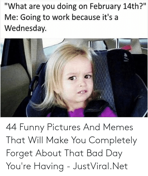 Memes That: 44 Funny Pictures And Memes That Will Make You Completely Forget About That Bad Day You're Having - JustViral.Net