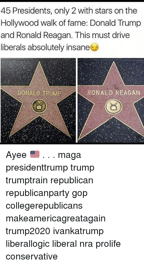 Ayee: 45 Presidents, only 2 with stars on the  Hollywood walk of fame: Donald Trump  and Ronald Reagan. This must drive  liberals absolutely insane  DONALD TRUMPRONALD REACAN Ayee 🇺🇸 . . . maga presidenttrump trump trumptrain republican republicanparty gop collegerepublicans makeamericagreatagain trump2020 ivankatrump liberallogic liberal nra prolife conservative