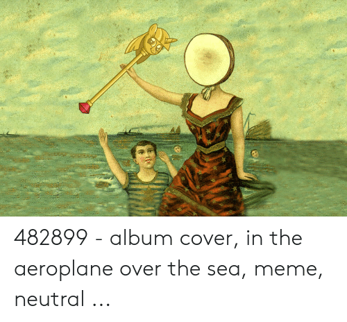 🅱️ 25+ Best Memes About in the Aeroplane Over the Sea   in the