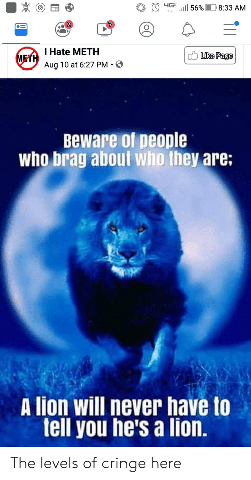 Lion, Never, and Terrible Facebook: 4G  56%  8:33 AM  VA  7  T Hate METH  Like Page  METH  Aug 10 at 6:27 PM  Beware of people  who brag about who they are:  A lion will never have to  tell you he's a lion. The levels of cringe here