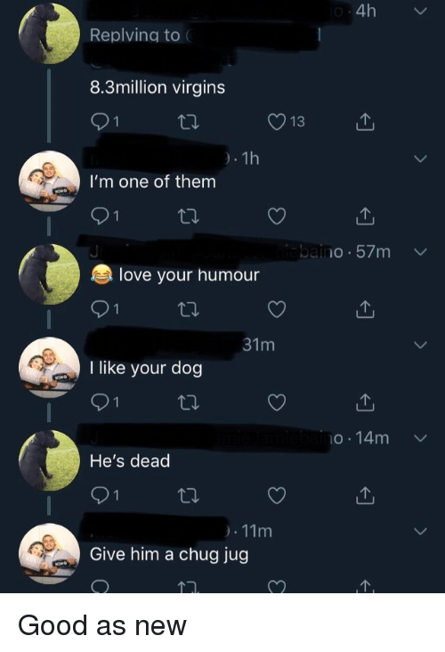 Love, Good, and Dog: 4h  Replving to  8.3million virgins  13  I'm one of them  be.. IO . 57m  love your humour  I like your dog  o.14m  He's dead  Give him a chug jug Good as new
