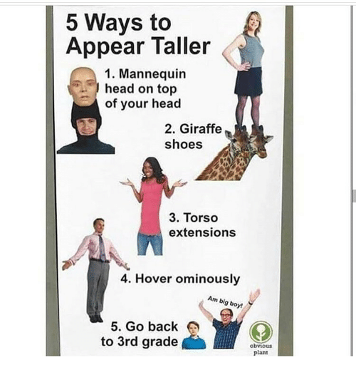 Mannequin: 5 Ways to  Appear Taller  1. Mannequin  head on top  of your head  2. Giraffe  shoes  3. Torso  extensions  4. Hover ominously  Am big boy!  5. Go back  to 3rd grade  obvious  plant