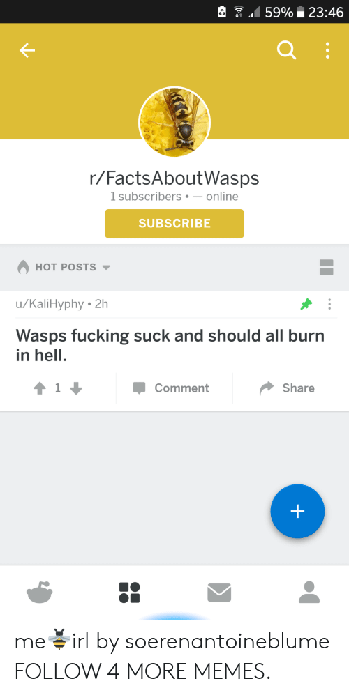 burn in hell: 59% 23:46  Q :  r/FactsAboutWasps  1 subscribers -online  SUBSCRIBE  HOT POSTS  /KaliHyphy 2h  Wasps fucking suck and should all burn  in hell.  41  Comment  Share  + me🐝irl by soerenantoineblume FOLLOW 4 MORE MEMES.