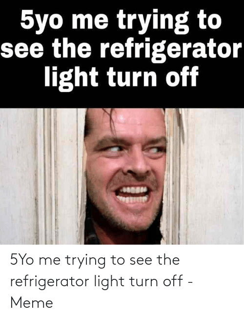 Refrigerator: 5Yo me trying to see the refrigerator light turn off - Meme