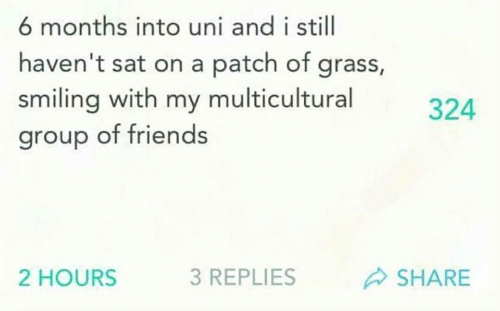 uni: 6 months into uni and i still  haven't sat on a patch of grass,  smiling with my multicultural  group of friends  324  2 HOURS  3 REPLIES  SHARE