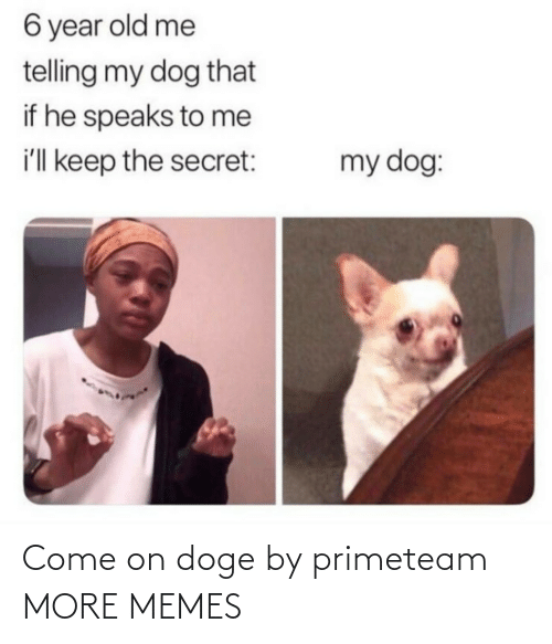 the secret: 6 year old me  telling my dog that  if he speaks to me  i'll keep the secret:  my dog: Come on doge by primeteam MORE MEMES