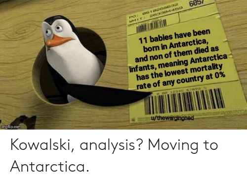 Meaning, Antarctica, and Been: 60  061020a032  PO:  WMIT: 20330445o  11 babies have been  born in Antarctica,  and non of them died as  infants, meaning Antarctica  has the lowest mortality  rate of any count ry at 0%  c o0 12346 67890  imgflip.com  u/thewargingned Kowalski, analysis? Moving to Antarctica.