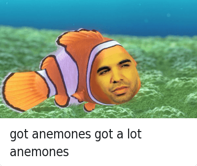 Drake, Got, and Aed: got anemones got a lot anemones got anemones got a lot anemones