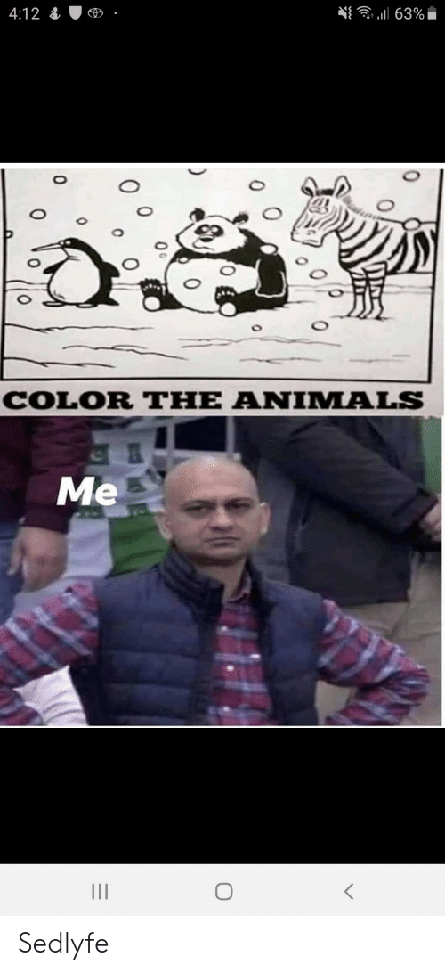 0 0: 63%  4:12  COLOR THE ANIMALS  Me  0  0 Sedlyfe