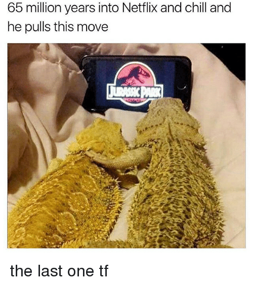 Netflix And Chilling: 65 million years into Netflix and chill and  he pulls this move the last one tf
