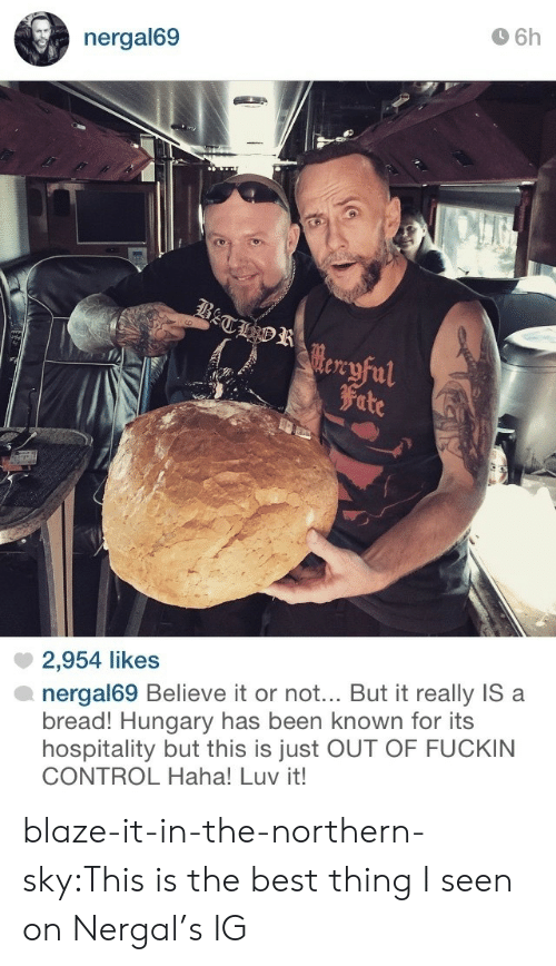 Tumblr, Control, and Best: 6h  nergal69  tre  Fite  2,954 likes  nergal69 Believe it or not.. But it really IS a  bread! Hungary has been known for its  hospitality but this is just OUT OF FUCKIN  CONTROL Haha! Luv it! blaze-it-in-the-northern-sky:This is the best thing I seen on Nergal's IG