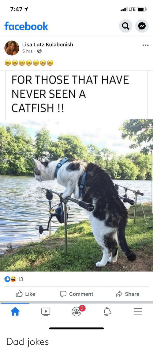 A Catfish: 7:47 1  l LTE  facebook  Lisa Lutz Kulabonish  5 hrs •  FOR THOSE THAT HAVE  NEVER SEEN A  CATFISH !!  13  O Like  Share  Comment Dad jokes