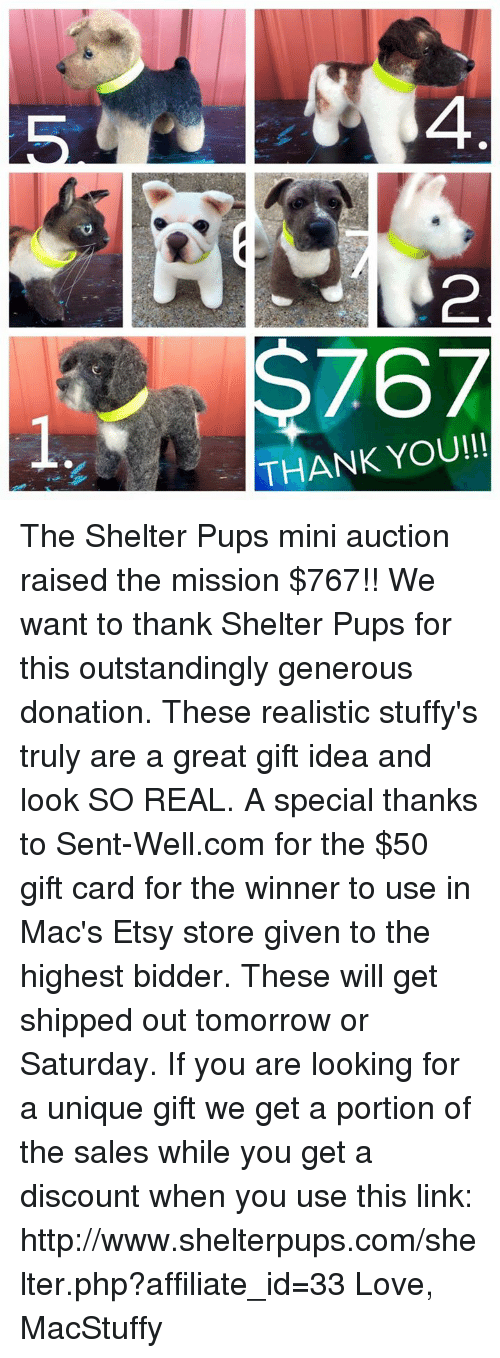 Stuffies: 767  THANK YOU!!! The Shelter Pups mini auction raised the mission $767!! We want to thank Shelter Pups for this outstandingly generous donation. These realistic stuffy's truly are a great gift idea and look SO REAL. A special thanks to Sent-Well.com for the $50 gift card for the winner to use in Mac's Etsy store given to the highest bidder. These will get shipped out tomorrow or Saturday. If you are looking for a unique gift we get a portion of the sales while you get a discount when you use this link: http://www.shelterpups.com/shelter.php?affiliate_id=33   Love, MacStuffy