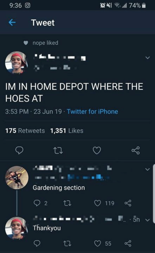 thankyou: 9:36 O  74%  Tweet  nope liked  IM IN HOME DEPOT WHERE THE  HOES AT  3:53 PM 23 Jun 19 Twitter for iPhone  175 Retweets 1,351 Likes  Gardening section  2  119  P 5n  Thankyou  55  >