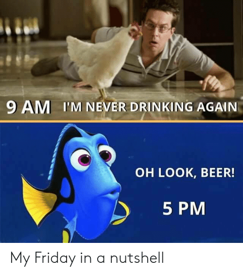Beer, Drinking, and Friday: 9 AM I'M NEVER DRINKING AGAIN  OH LOOK, BEER!  5 PM My Friday in a nutshell