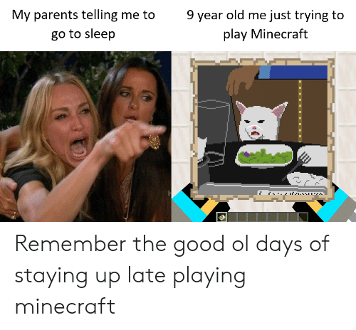 Go to Sleep, Minecraft, and Parents: 9 year old me just trying to  My parents telling me to  play Minecraft  go to sleep Remember the good ol days of staying up late playing minecraft