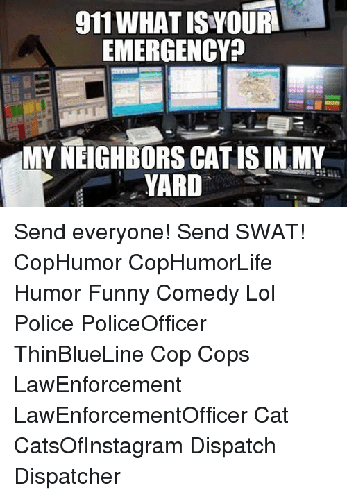 Funny, Lol, and Memes: 911 WHAT ISWOURI  EMERGENCY  MY NEIGHBORS CAT IS IN MY  YARD Send everyone! Send SWAT! CopHumor CopHumorLife Humor Funny Comedy Lol Police PoliceOfficer ThinBlueLine Cop Cops LawEnforcement LawEnforcementOfficer Cat CatsOfInstagram Dispatch Dispatcher